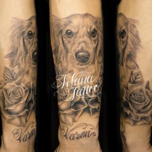 犬と薔薇のポートレイトタトゥー