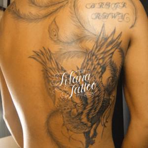鳳凰|不死鳥のタトゥー