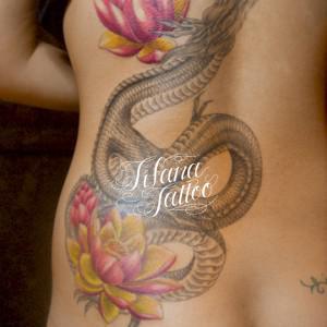 龍と蓮の刺青作品