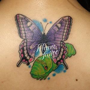 蛹と蝶のガールズタトゥー