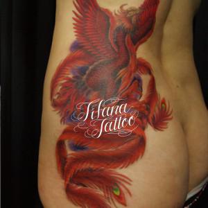 深紅な鳳凰の刺青作品画像