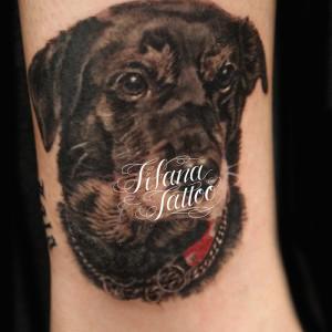 犬のポートレイトタトゥー