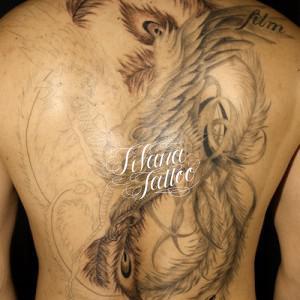 背中一面|鳳凰の刺青作品画像