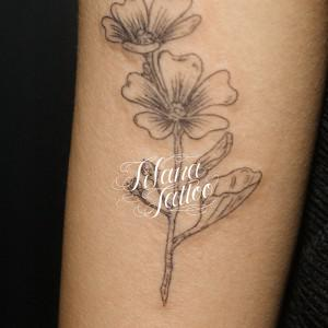 Botanical Tattoo