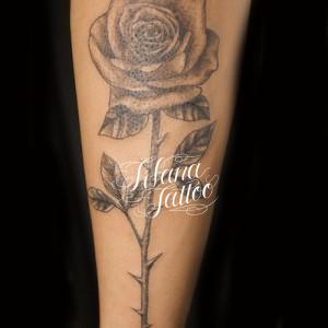一輪の薔薇のタトゥー