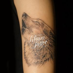 狼のタトゥー